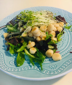 Michael McBeth_Micro Kale Scallop Salad_HamamaRecipes_9.11.1