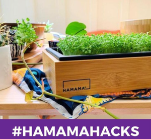 Hamama Hacks- Keeping Pests Away