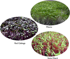 Microgreen Nutrition, Food Safety, and Shelf Life: A Review