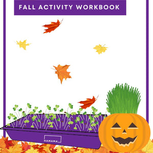 Kid's Fall Activity Workbook 🎃🦃🍁