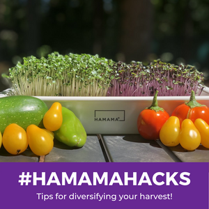 Hamama Hacks: #5 How to Store Unused Seed Quilts