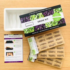 Hamama Grow Kit -- Ceramic Edition