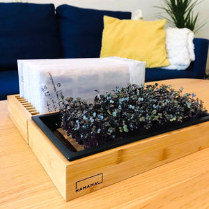 Seed Quilt Organizer + FREE Grow Tray