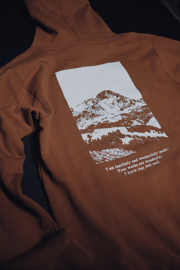 Move Mountains Bronze Unisex Hoodie Sweater