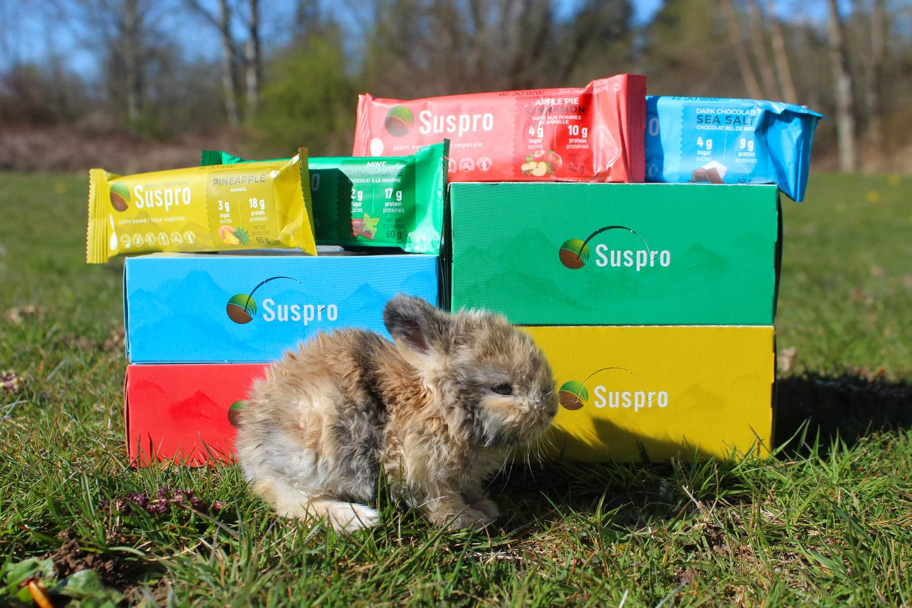 Suspro protein bars with Critter Care Wildlife