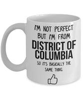 District Of Columbia Mug Dad Gift Funny State Mug Gift For Friends Mom Gift City Hometown Mug Work Pals Mug Bff Gift -11oz