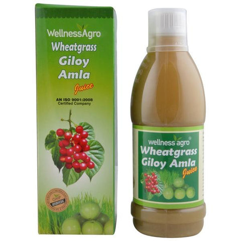 Wellness Agro Wheat Grass Giloy Amla Juice 250 ML- Pack of 2