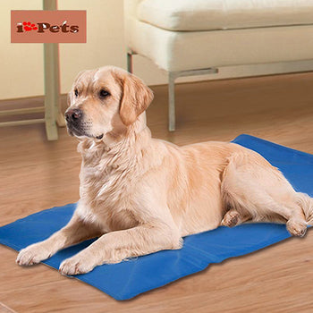 iPets™ Cooling Gel Chilly Mat for Pets