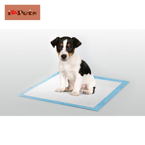 iPets™ Puppy Training <br>Pads