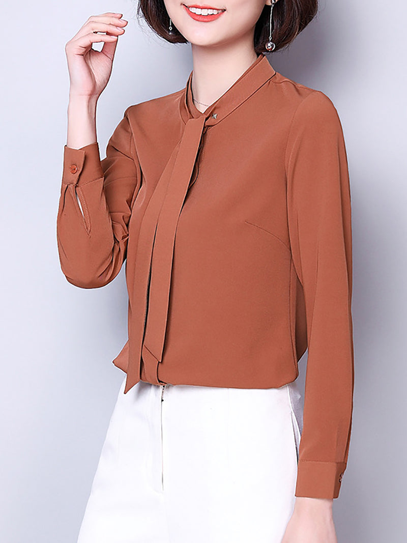 Shift Chiffon Casual Long Sleeve Plain Blouse