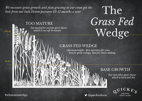 Grass fed wedge