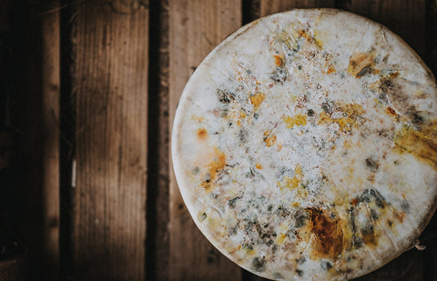 Quicke's Award Winning Elderflower Cheese