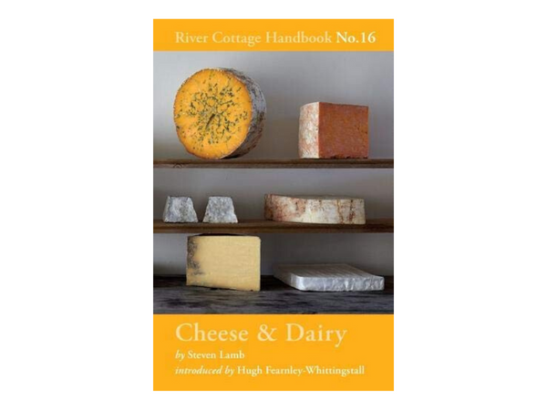 Cheese & Dairy: River Cottage Handbook No.16 by Steven Lamb