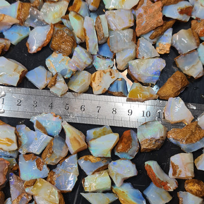 50ct Rough Australian Pipe Opal Parcels 10-25mm