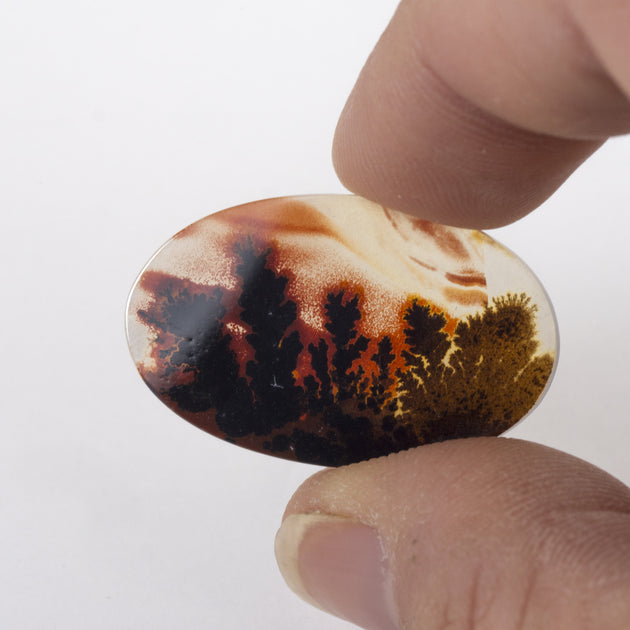 31x19mm Top Grade Indian Picture Agate