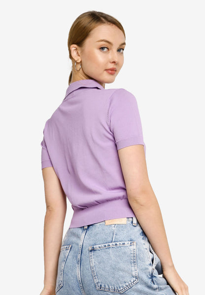 Flavia Polo Knit Top in Purple