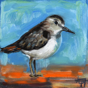 "Sandpiper, 6"" x 6"" Oil painting on Panel with sealed natural wood 2"" sides"