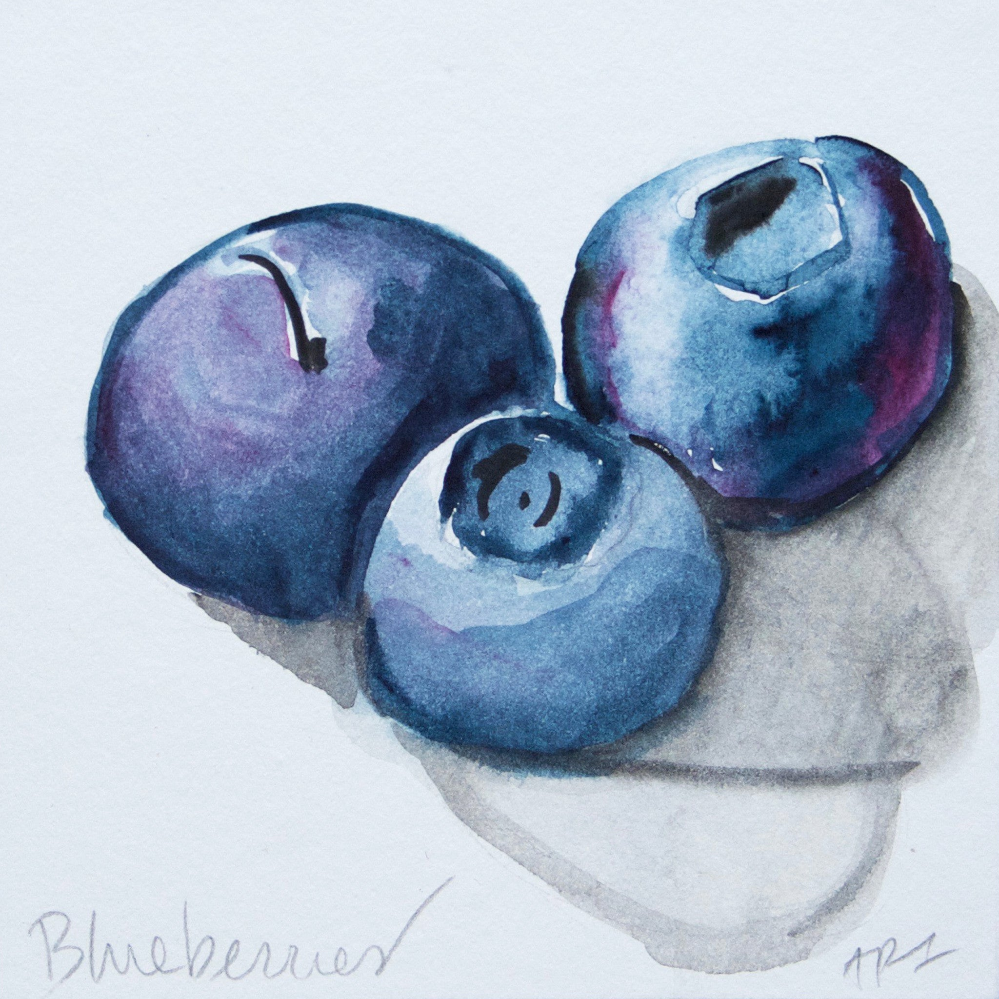 "Blueberries Watercolor Sketch, Mounted on 5"" x 5"" box panel"
