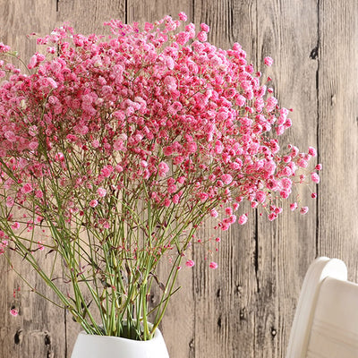 1 Pack Gypsophila Dried Flowers Bouquet Colorful Decoration Handled