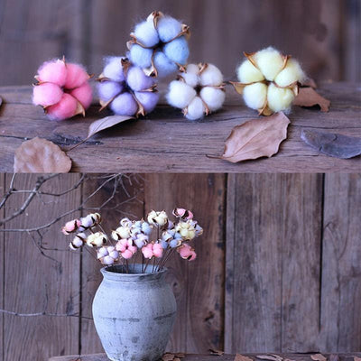 1 Pieces Colorful Cotton Flower Natural Dried Flowers For Decoration Handled