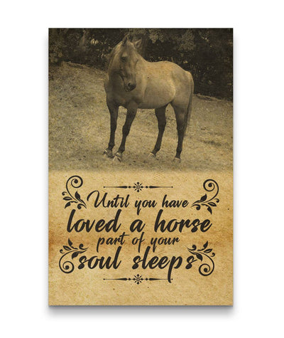 Until You Have Loved Horse - A Part Of Soul Sleeps White Horse Canvas Print 8fa7edb32