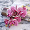 6 Heads Simulation 3D Phalaenopsis Silk Orchid Decoration Artificial Flowers Handled
