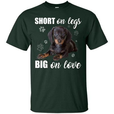 Nice Dachshund T Shirt - Short On Legs Big On Love, is a cool gift
