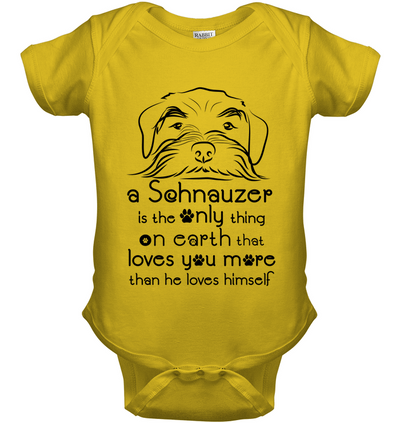 A Schnauzer Loves You More Than He Loves Himself T Shirt