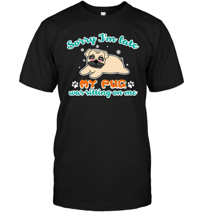 My Pug Was Sitting On Me T Shirt