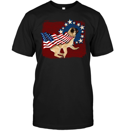 Independence Day Pug T Shirt