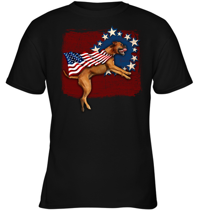 Independence Day Boxer T Shirt
