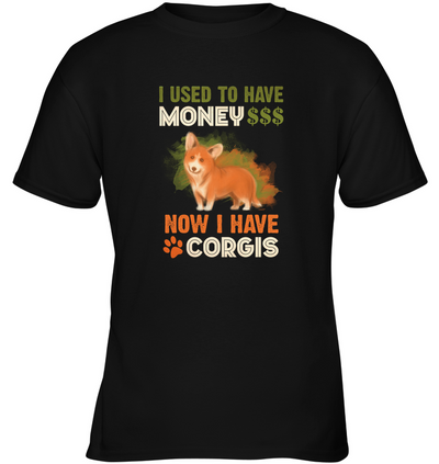 I Used To Have Money Now I Have Corgis T Shirt