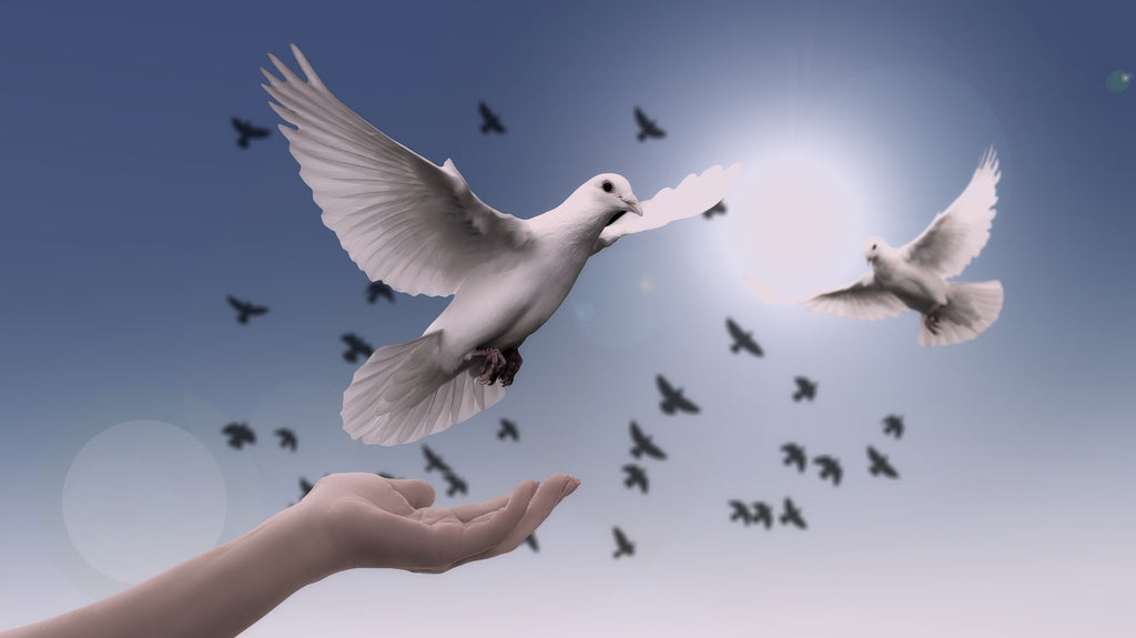 ONE simple step to improve your sleep and ultimately take your life to the next level - picture of hand setting free doves