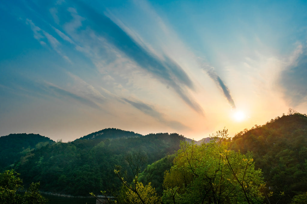 ONE simple step to improve your sleep and ultimately take your life to the next level - image of sunbeams shining over the green hills