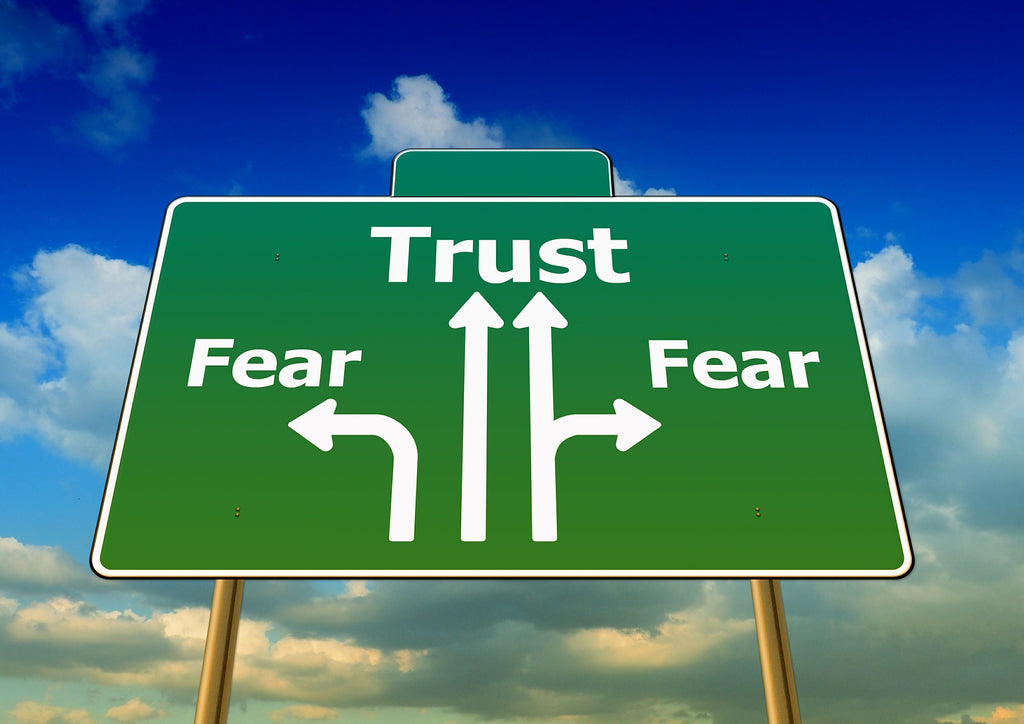 Fear is an experience, not an identity. gren signboard showing straight ahaed as trust and the divisions as fear..jpg