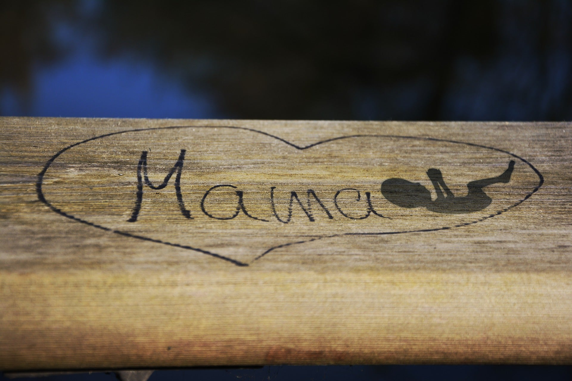 First Trimester, Only Half Pregnant. image of a wooden sign saying 'mama'