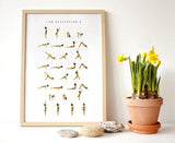 YogaPoster_sunsalutation_B_Yogaprints_