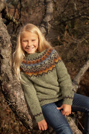 Kit: 20-year Anniversary Sweater Pattern Kit - Green Children Sweater - Álafoss - Since 1896
