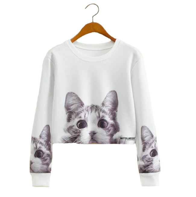 Fashion Cropped Sweatshirt