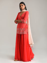Madsam Tinzin - Red Embroidered Gharara Set - INDIASPOPUP.COM