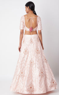 Pink Peacock Couture-Pink Embroidered Lehenga Set-INDIASPOPUP.COM