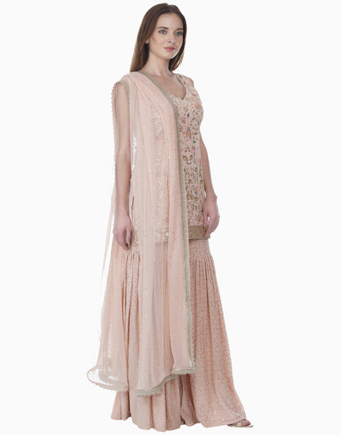 Bhumika Grover-Blush Pink Mukaish Sharara Set-INDIASPOPUP.COM