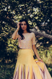Yellow & Mauve Croptop With Skirt