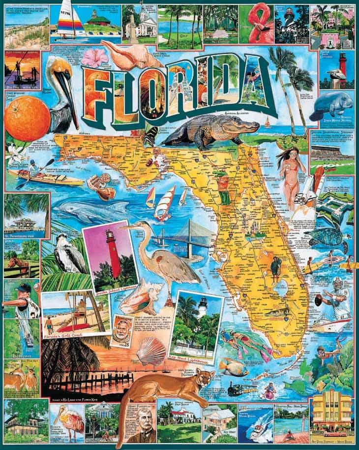 Florida - 1000 Pieces