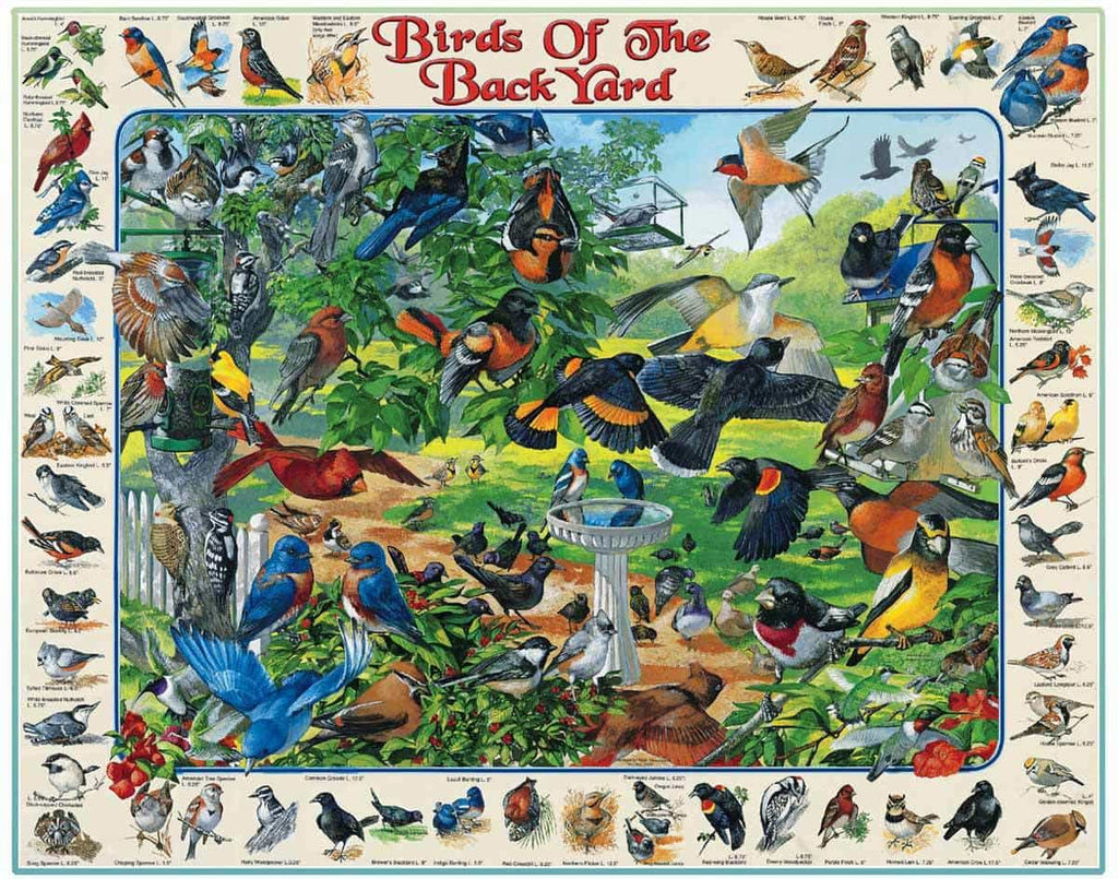 Birds of the Back Yard (267PZ) - 1000 Piece Jigsaw Puzzle