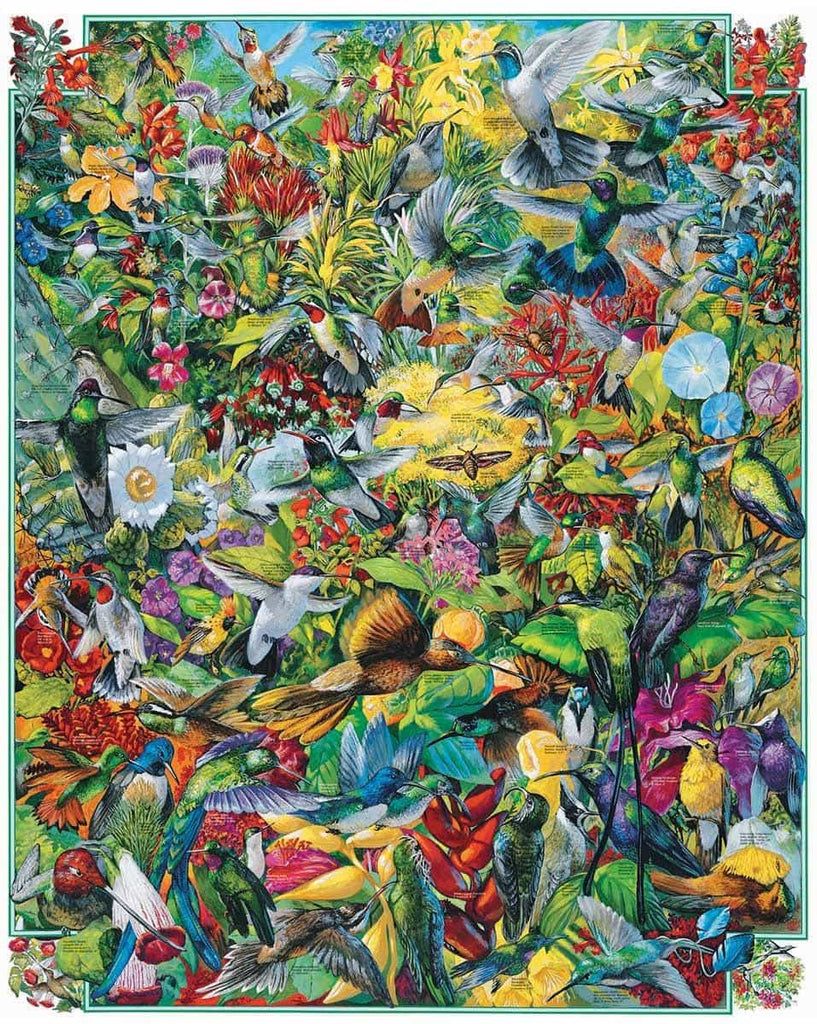 Hummingbirds(294PZ) - 1000 Piece Jigsaw Puzzle