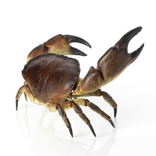 Missed a Clause - Limited Edition Bronze Crab