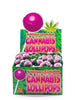Cannabis Lollipops candy Kush