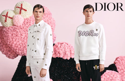 KAWS COLLABORATION DIOR FASHION ART
