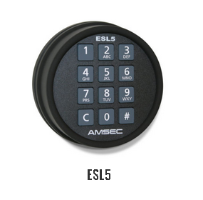 AMSEC AM4020E5 Burglary and Fire Safe